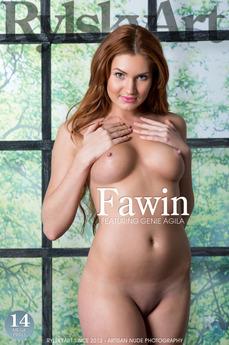 Fawin