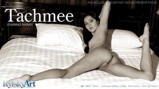 Tachmee