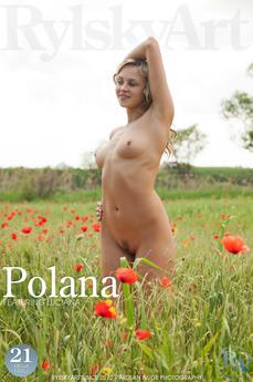 Polana